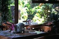 Bali124